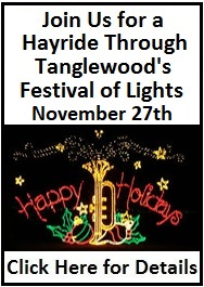 Click here for Festival of Lights Details
